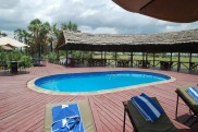 This pool provided a great (refreshing) vantage point for watching the nearby zebra and warthog.