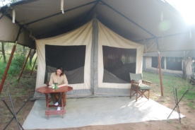 Amanda writes in her safari journal outside our tent at the Katikati camp.