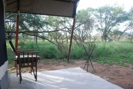 The view of the Serengeti from our tent.