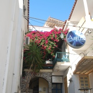 Bougainvillea brighten views all over the island of Andros, Greece.