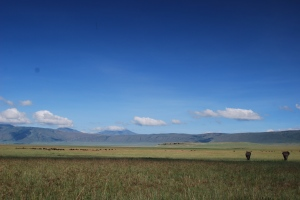 The Ngorongoro Conservation Area is a conservation area and a UNESCO World Heritage Site located 180 km west of Arusha in the Crater Highlands area of Tanzania.