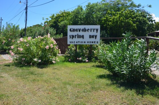 Guavaberry Spring Bay Sign