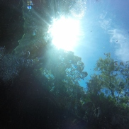 The sun shining above us
