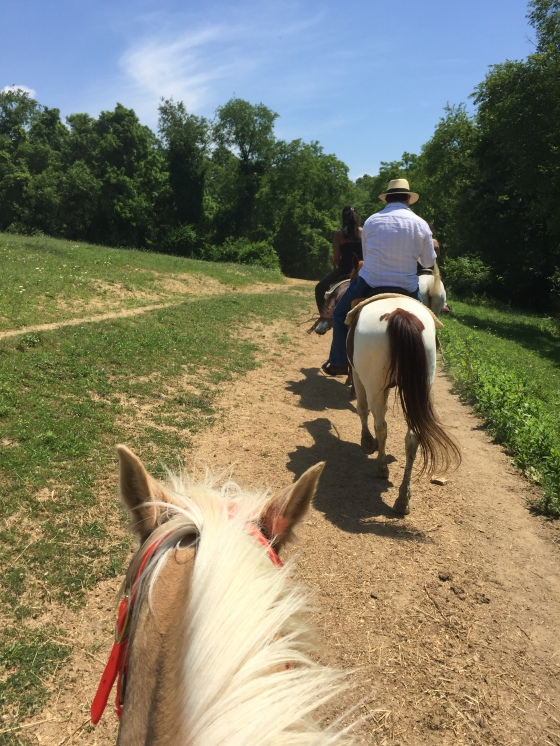 Trail Riding at Rolling Hills
