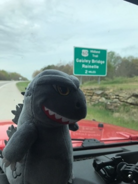 My co-pilot, Godzilla, posing in front of the Gauley Bridge in West Virginia.